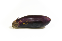 茄子の写真のフリー素材