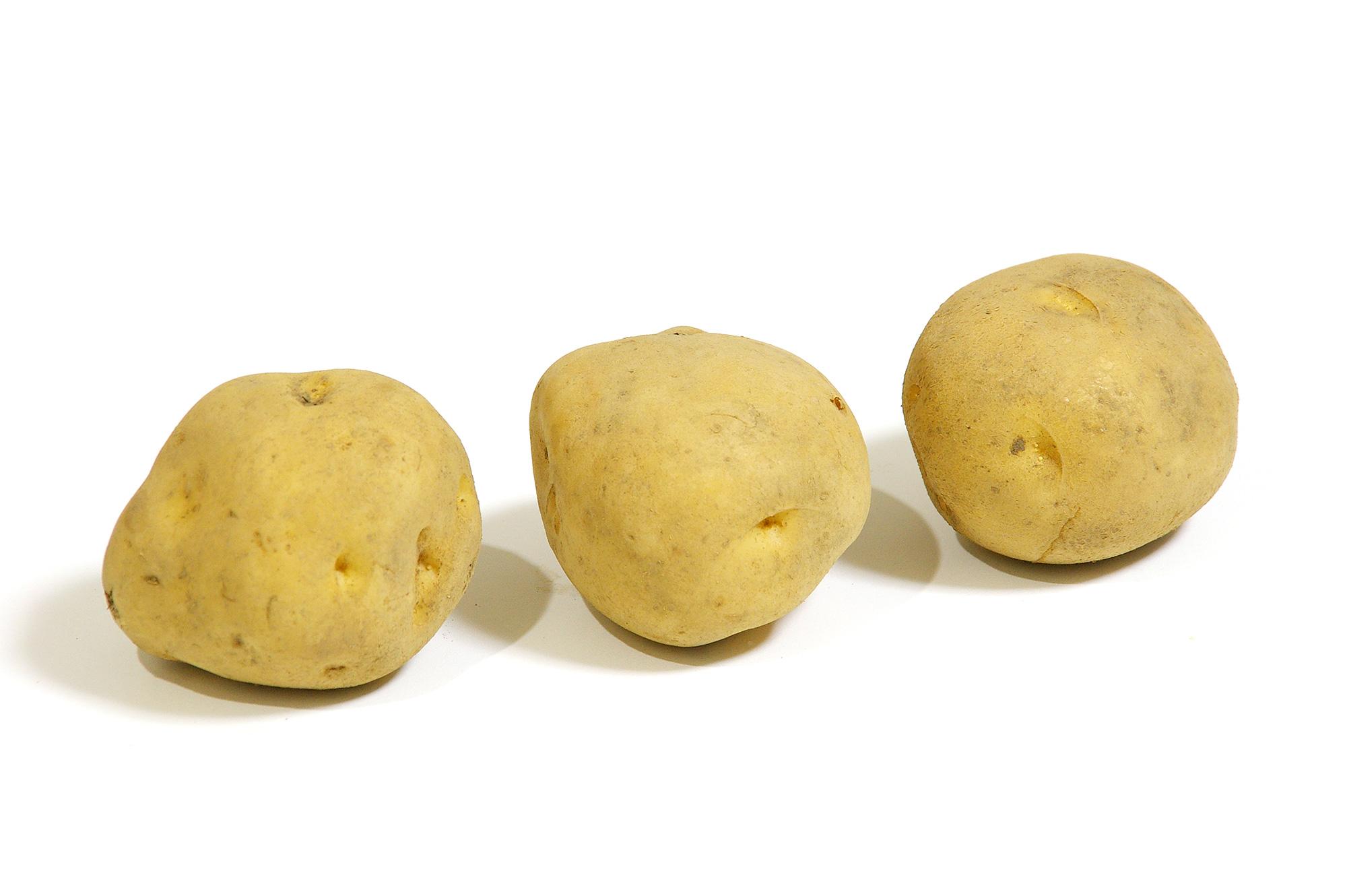 ジャガイモの写真のフリー素材