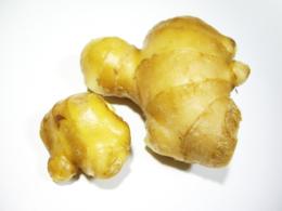 生姜の写真のフリー素材