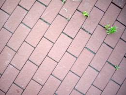 歩道のテクスチャの写真のフリー素材