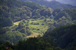 山間の畑のフリー写真素材