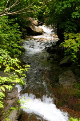 渓谷の清流のフリー写真素材