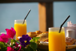 爽やかなテラスで食べる朝食の写真のフリー素材
