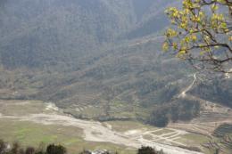 山の斜面の段々畑の写真のフリー素材