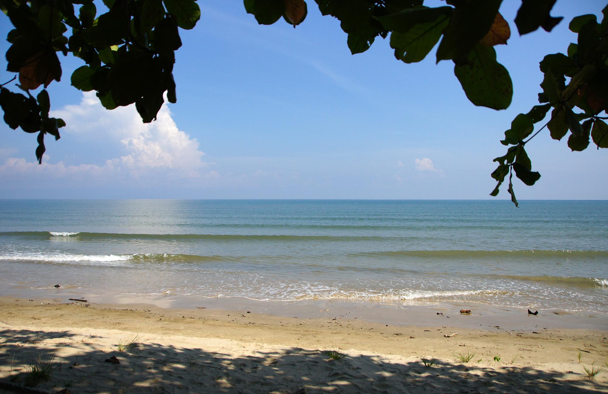 木陰から見る海のフリー写真素材