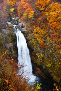 秋保大滝の秋
