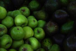 青リンゴたくさんのフリー写真素材
