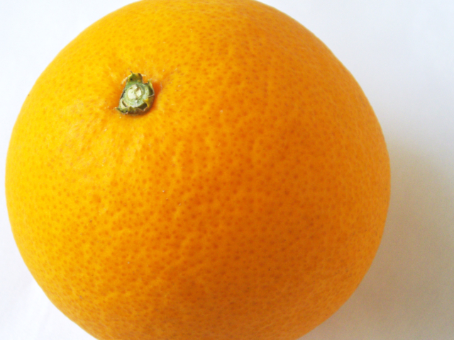 丸いオレンジのフリー写真素材