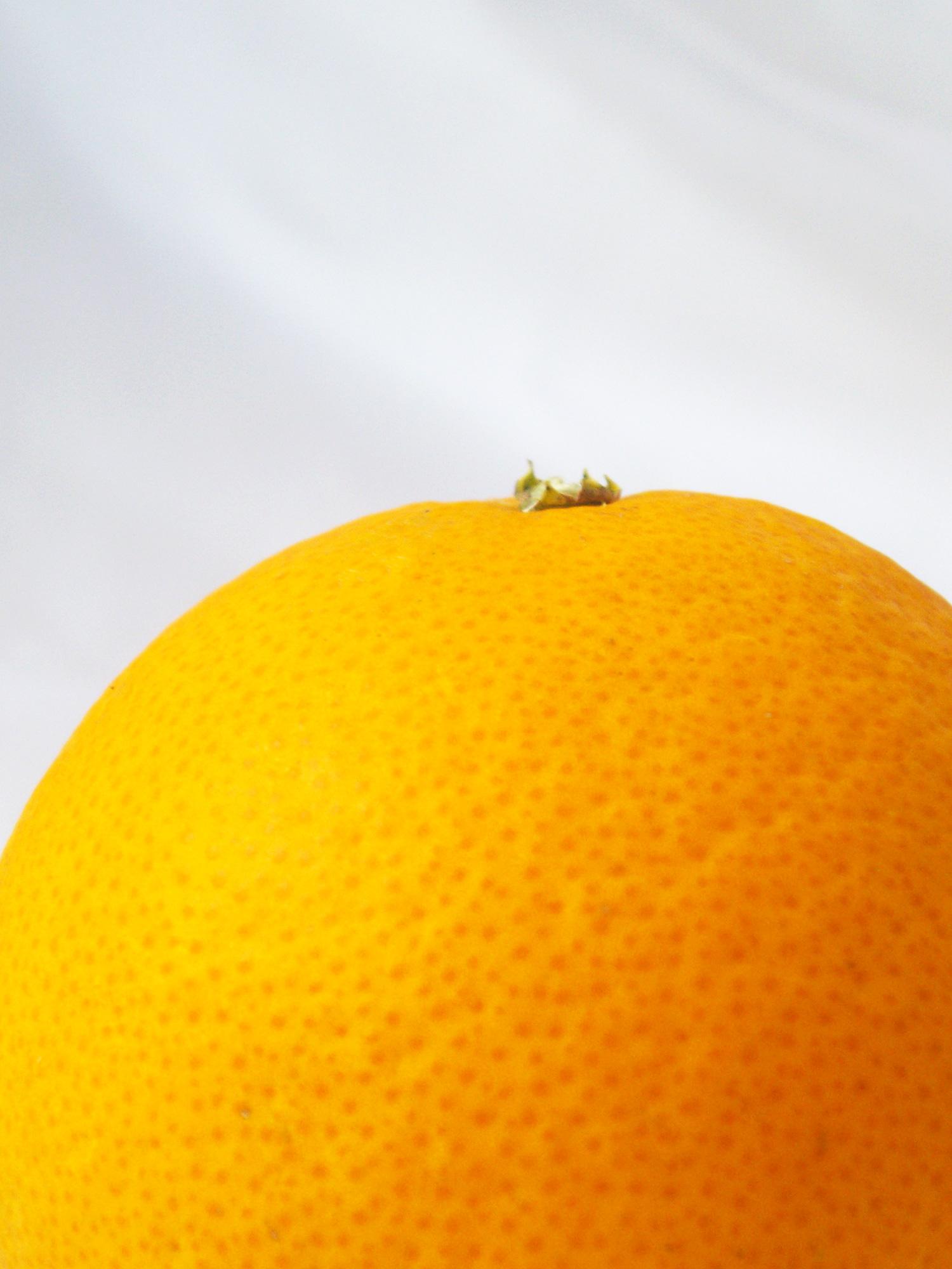 横から見たオレンジの無料写真素材