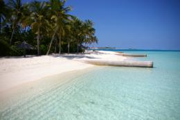 リゾートビーチと椰子の写真のフリー素材