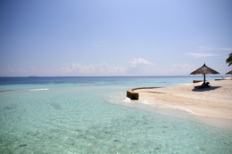 ビーチパラソルのフリー写真素材