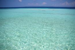 南の島の海のフリー写真素材