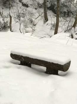 雪の中のベンチ