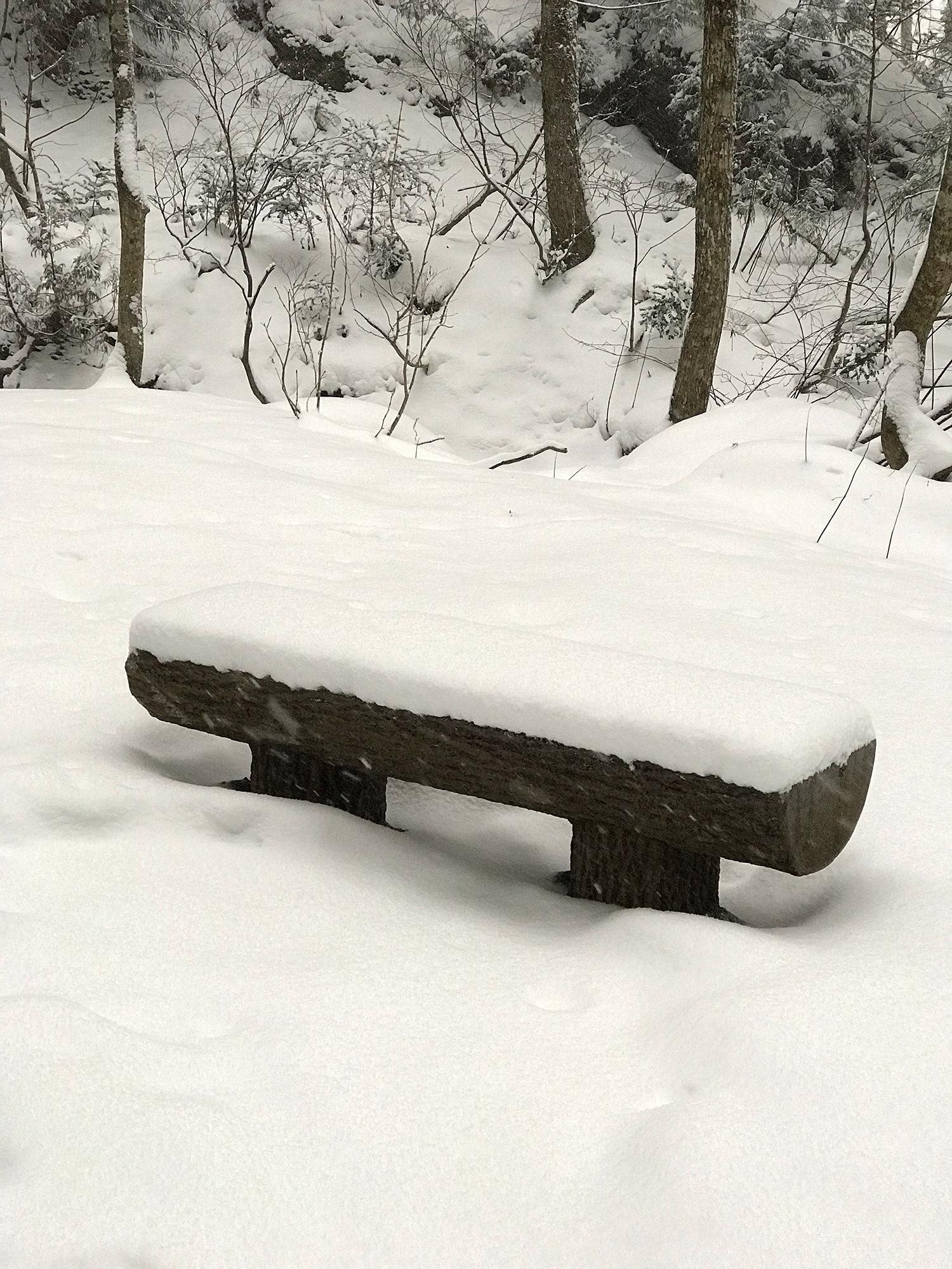 雪の中のベンチのフリー写真素材
