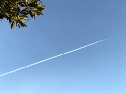 飛行機雲のフリー写真素材