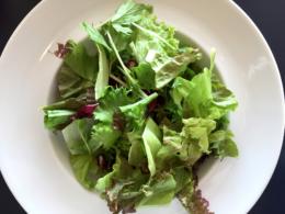 皿の上のサラダのフリー写真素材