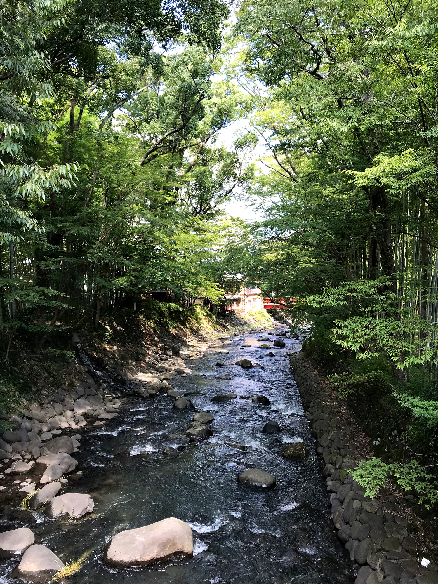 修善寺の桂川のフリー写真素材