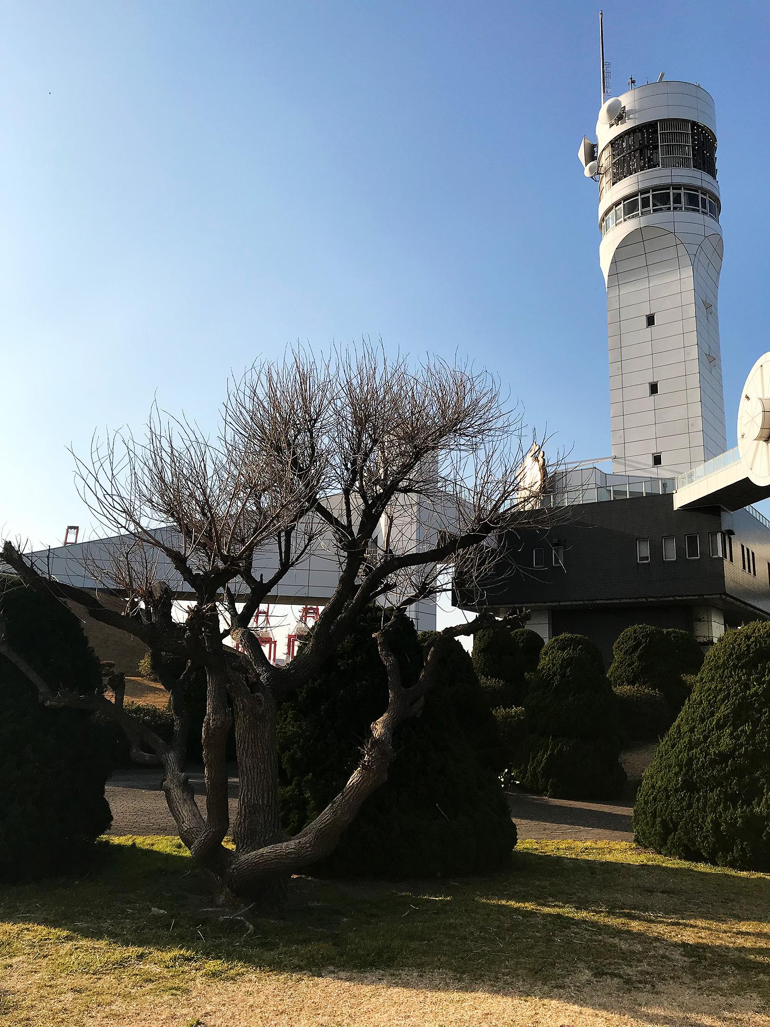 横浜港シンボルタワーの写真の無料画像素材